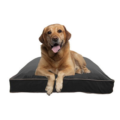 Doggybo Max(ドギボーマックス)ダークグレー