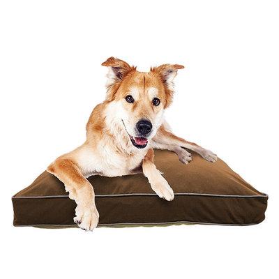 Doggybo Midi(ドギボー ミディ)チョコレートブラウン