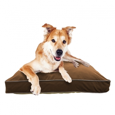 Doggybo Midi(ドギボー ミディ)